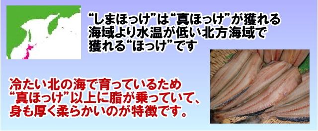 es-shima-hottske-test_1